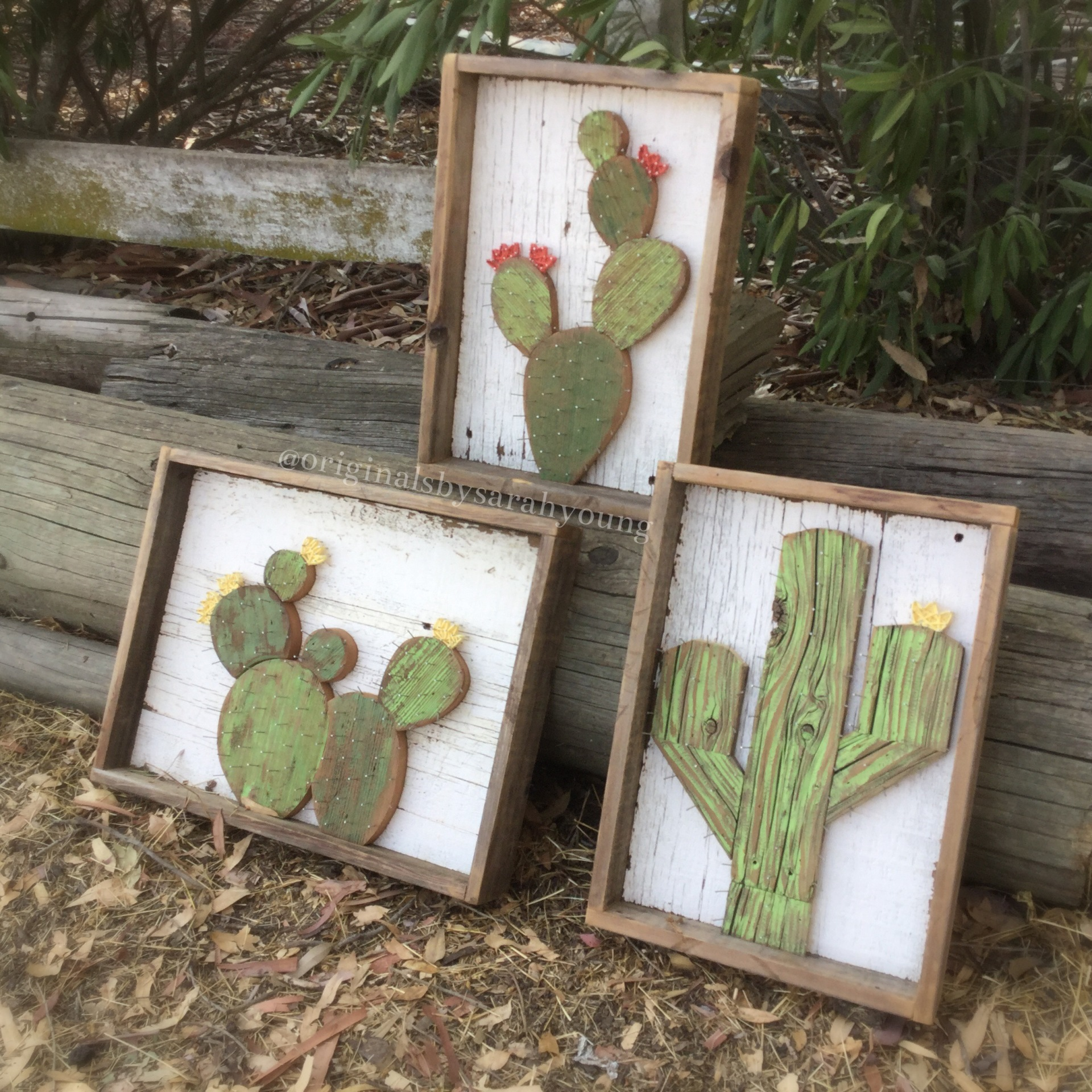 Hand Cut Cactus with Nail Thorns and String Flowers