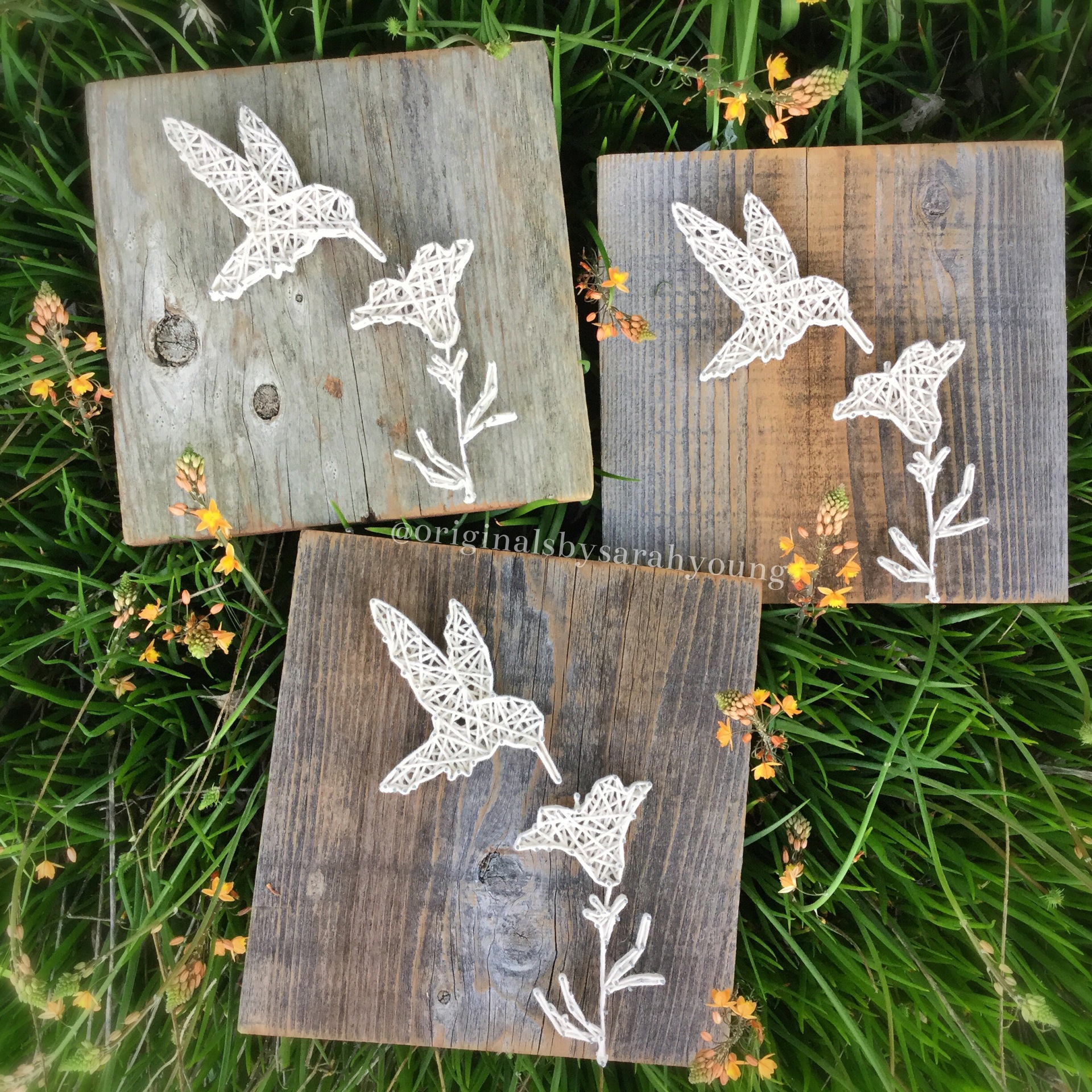 Hummingbird string art